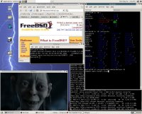 MPlayer FreeBSD alatt