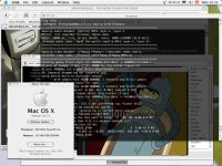 MPlayer Mac OS X alatt