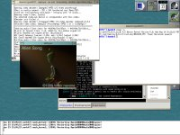 MPlayer on OpenDarwin