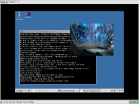 MPlayer ReactOS-en